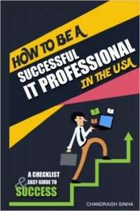 it-profssional-book
